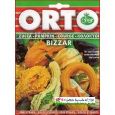 Zucca ornamentale Bizzar bustina semi zucchina
