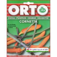 Zucca ornamentale Cornetta bustina semi zucchina