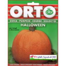 Zucca ornamentale Halloween