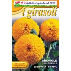 Girasole Tall sungold