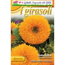 Girasole orange sun